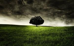 landscape-workshop-1440x900.jpg
